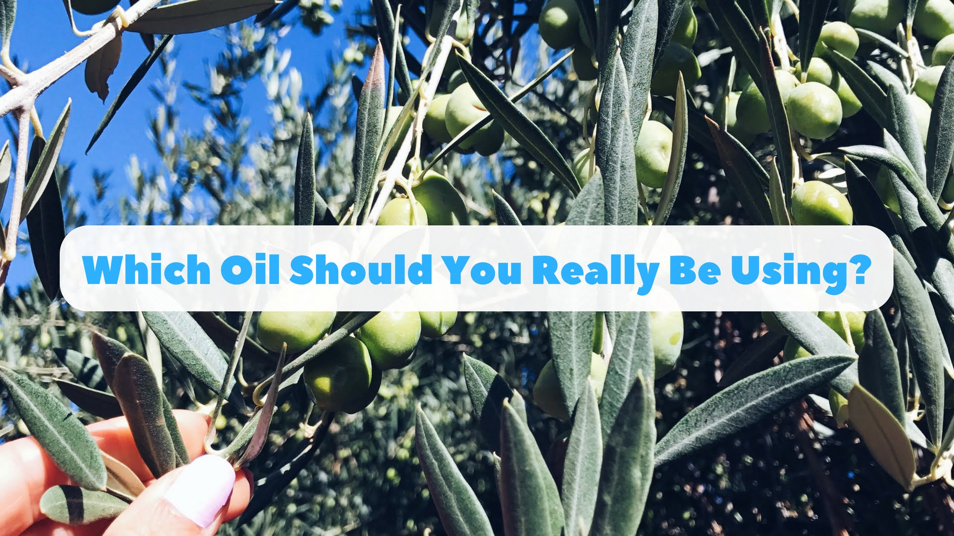 Which Oil Should You Really Be Using?